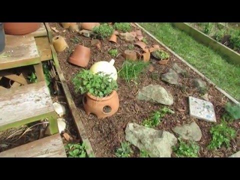Herb Garden Make-Over: Lemon Balm, Oregano, Chives, Thyme, Celery LeaF, Parsley & Sage -TRG2016