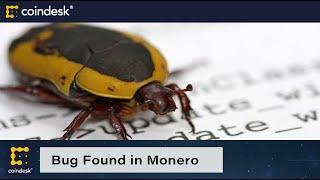 Bug Found in Decoy Algorithm for Privacy Coin Monero