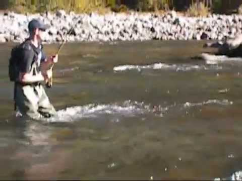 Fly fishing the upper north fork lewis river for rainbow for Lewis river fishing report