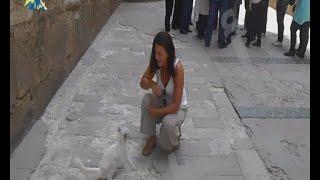 بالفيديو.. فتاة كندية تشيد بمناخ مصر المعتدل