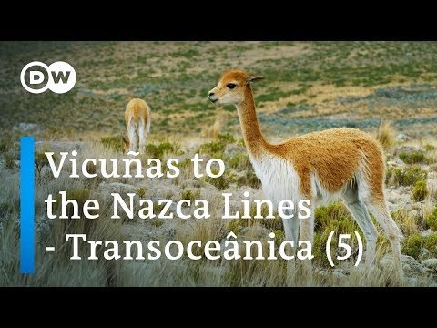 From Rio to Lima – Transoceânica, the world's longest bus journey (5/5) | DW Documentary
