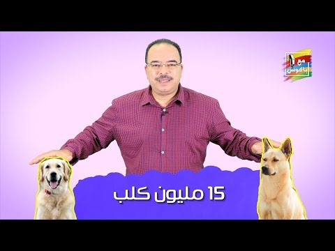 مع باكوس ـ  15 مليون كلب | مصلحة المواطن اهم من مصلحة الكلب