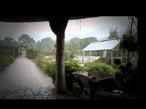 Sleep Well! Rain on a Tent - Rain on a Greenhouse. 8 Hours of white noise to sleep to.
