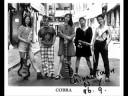 眼镜蛇(Cobra) - 1966