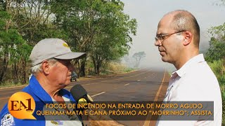 """Focos de incêndio em Morro Agudo queimam mata e cana próximo ao """"Morrinho"""""""