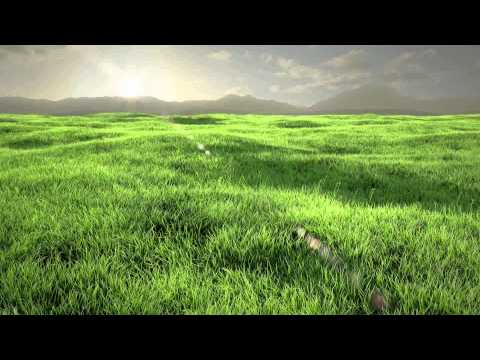 [HD] Grass Animation - Covered Next Tutorial!