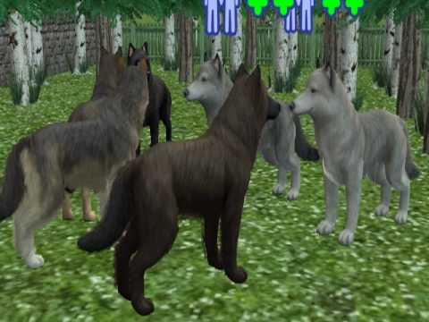 The Sims  Dogs Turning Into Wolves