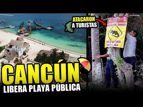 Gran Noticia: Cancún libera playa pública, hay alerta por cocodrilos, regresan cruceros a Cozumel