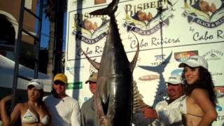 CatchStat | 2012 Bisbee's Los Cabos Offshore Tournament Fish #14363