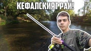 Кефалският РАЙ! (Спінінг, ловля ЖЕРЕХА | CHUB FISHING)