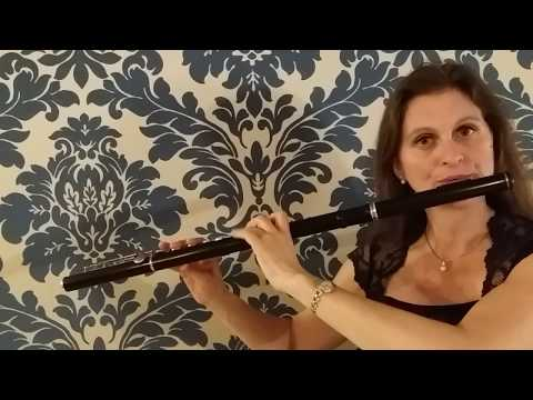 Karin Leitner plays Bach Partita in a Palazzo in Venice