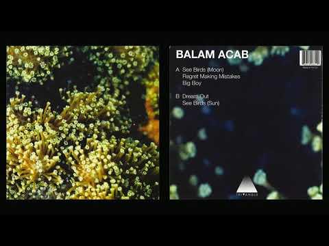 "Balam Acab - See Birds 12"" (2010)"
