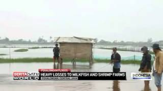 Heavy Losses to Milkfish and Shrimp Farms