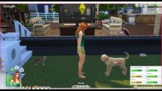"""Приют для бездомных животных в """"The Sims 4"""""""