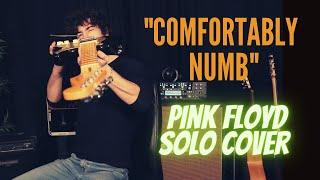 Leonardo Reina - Comfortably Numb solos (Pink Floyd)