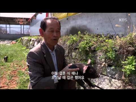 [HIT] 한국인의 밥상 - 경북 김천, 어머니의 부뚜막.20150507