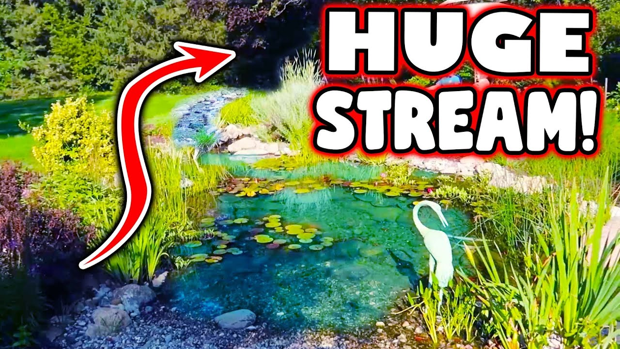 50 Foot Stream That COLLECTS RAINWATER!!