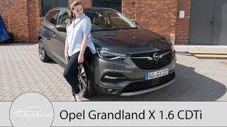 Opel Grandland X 1.6 CDTi Fahrbericht Der 360 Grad Check des grten Opel SUV Autophorie