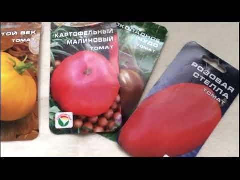 Низкорослые (детерминантные) сорта томатов! А надо ли их подвязывать?? Мое мнение... | детерминантные | низкорослые | выращивание | вырастить | помидоры | подвязка | томатов | помидор | томаты | сорта