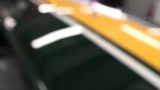 Drive Riot - GP2 Green & Yellow Caterham Team Air Asia