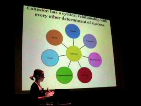 The relationship between team cohesiveness and performance (Kimberly Gillies)