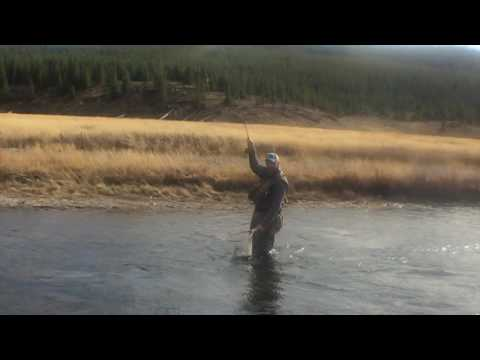 Yellowstone, Madison fly fishing