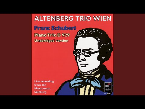 Trio For Violin, Violoncello In E-Flat Major, Op. 100 D 929 Unabridged Version: Allegro Moderato