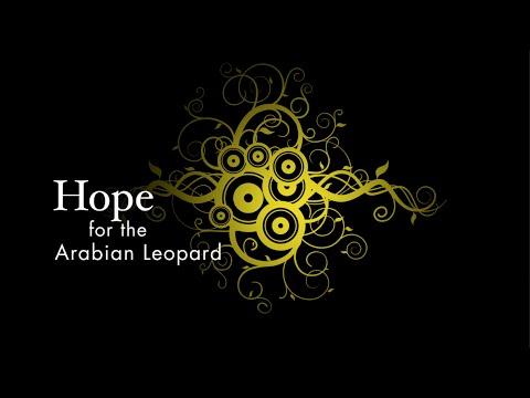 Hope for the Arabian Leopard