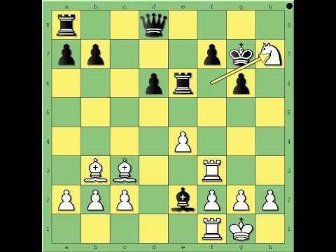 Najlepse partije  2 deo - NEZHMETDINOV vs CHERNIKOV - Sicilijanka  # 445