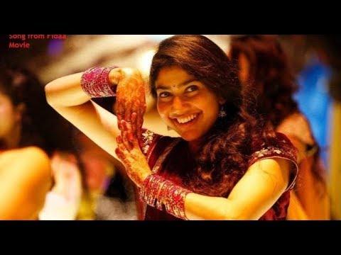 Rowdy baby SAI PALLAVI dance performance from fidaa,maari,mca,premam