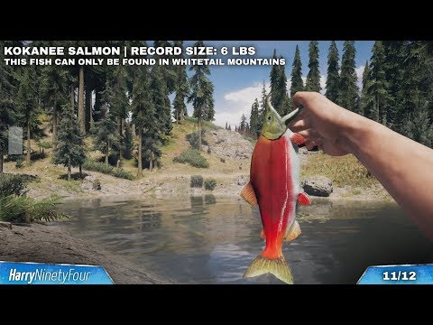 Far Cry 5 - All Hard Difficulty Fishing Spot Locations (Hunting Challenges & State Records)