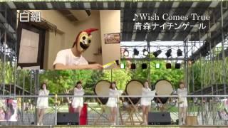 青森ナイチンゲール☆白組親衛隊.