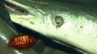 Catching A Full-Sized Alligator Gar - River Monsters