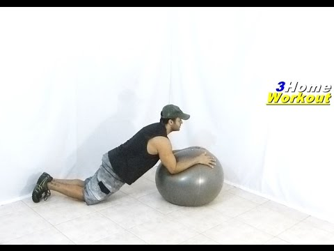 Fitness at Home – RIPPED ABS EXERCISE (BALL PLANK // WEIGHT LOSS)