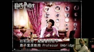 Flute Cover - Harry Potter - Professor Umbridge