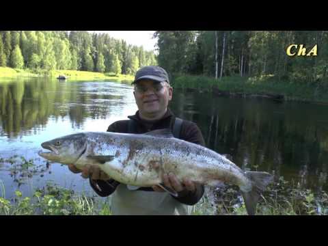рыбалка держи иксе во  архангельской области