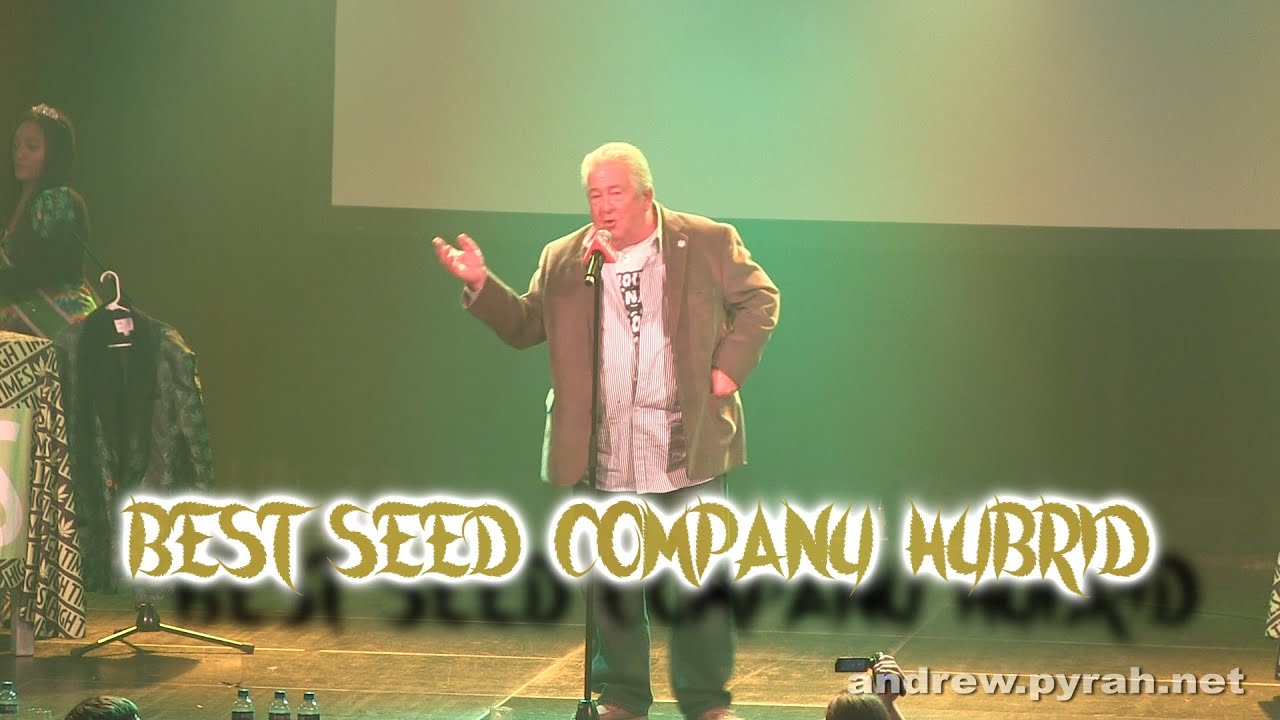 Best Seed Company Hybrid - Amsterdam Cannabis Cup Award ...