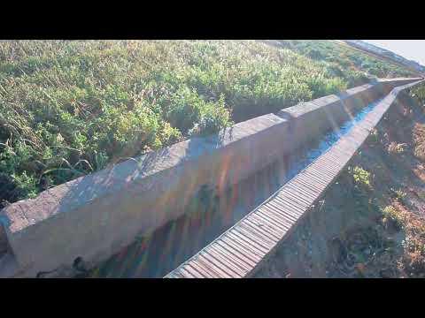 Acequia de riego y campo de naranjos thumbnail