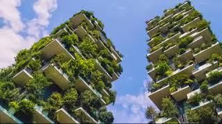 Pourquoi HPP-Congo contribue à rendre nos villes plus vertes.