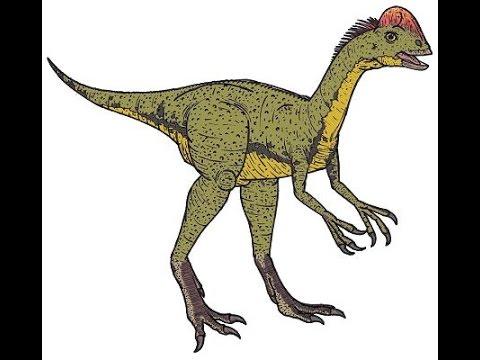 Chirostenotes | Enciclopedia sobre Dinosaurios