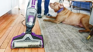 The Cleaning Tool That Changed Everything In Our House Full of Pets