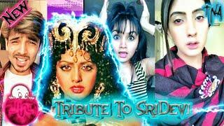Video Tribute To SriDevi |Musically Videos On SriDevi|Best Musical.ly Videos|TNA download MP3, 3GP, MP4, WEBM, AVI, FLV September 2018
