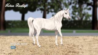 Colour Genetics - Horse Reality