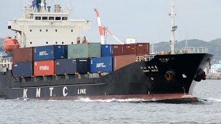 SUNNY MAPLE - KMTC Line container ship