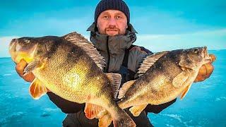 ВОТ ЭТО РАЗМЕР! ЛОВЛЯ ОКУНЯ НА БАЛАНСИР! Зимняя рыбалка 2021 /горбачи/  рыбалка зимой.