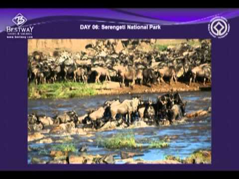 East Africa: Narrated presentation about safaris with Bestway Tours & Safaris.