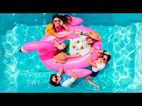 Dami Alvarez - Perfect Day (Official Video) 🍉 indir