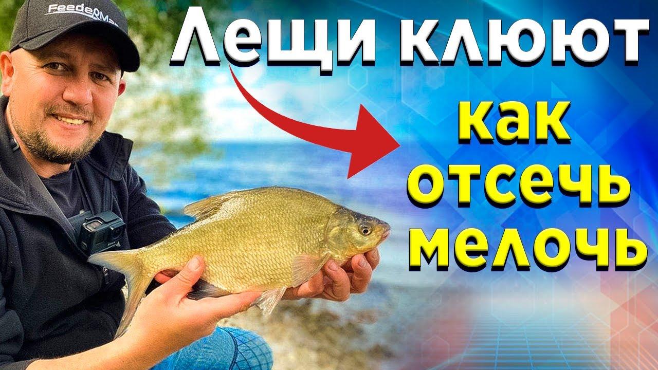 Лещ на ФИДЕР! Как избавится от мелкой рыбы и ловить крупную.Топ 5 полезных советов