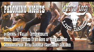 Palomino Nights