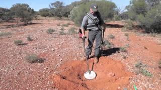 Gold Detecting Leonora Western Australia